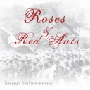 Roses & Red Ants